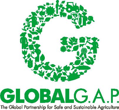G_Logo_slogan_green_RGB