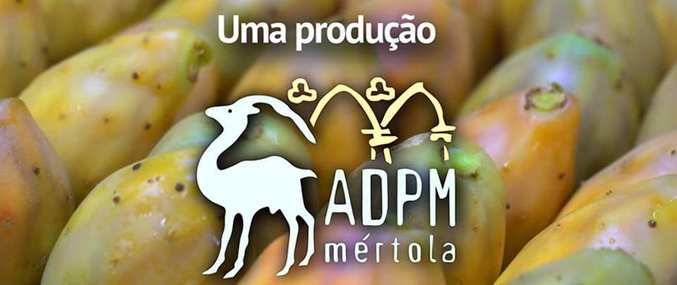 vídeo produção figos da india portugal